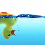 Rubber-duck-1110×550